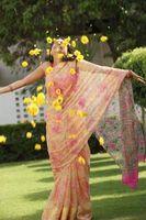 Typer af indiske mode Saris