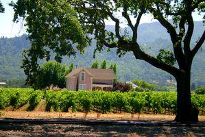 Overnatning tog ture i Californien vin land