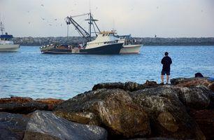 Laksefiskeri forordninger i Washington