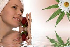 Hvordan til behandling af Acne ar med Tea Tree olie