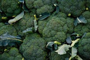 Sådan opbevarer frisk Broccoli