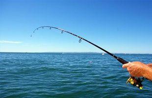 Sådan bruges en Fishfinder til at fange bas