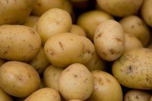 Sådan kog & derefter skrælle kartofler