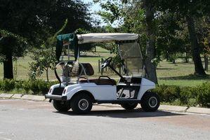 Florida State Golf Cart love
