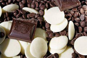 Hvordan er sukker gratis chokolade lavet?