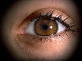Sådan bruges Olay øje bælg