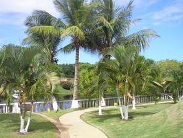 Napoli Beach & Golfresort