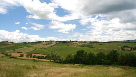 Vingård ture i Toscana, Italien