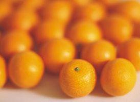 Hvordan til at bruge op ekstra appelsiner