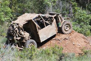 ATV & Dunn Buggy stier i Georgien