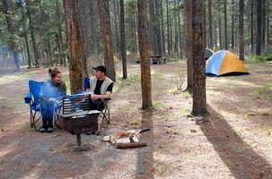 Michigan nationale campingpladser