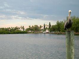 Senior pensionering RV parker i nærheden af Tampa, Florida